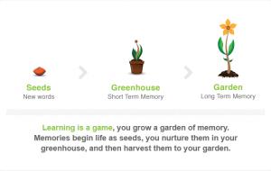 Il giardino della memoria di Memrise