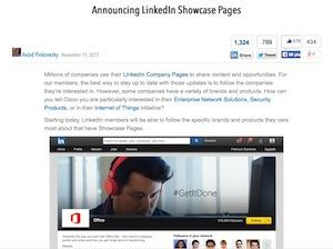 Nel novembre 2013 Linkedin ha annunciato il lancio delle Pagine Vetrina